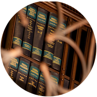Image Of Litigation Consultants Books - Litigation Insights