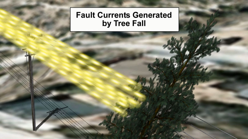 Fault Currents Generated by Tree Fall